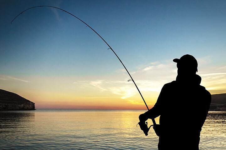 Angling and Fishing