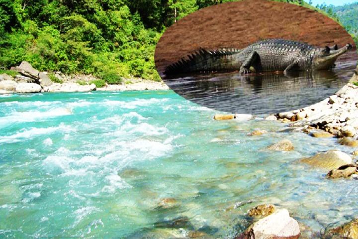 Sonanadi River, Corbett