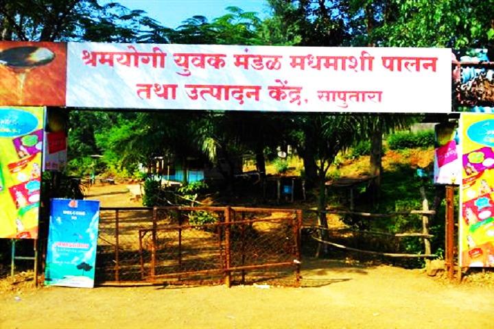 Saputara Honey Bee Center