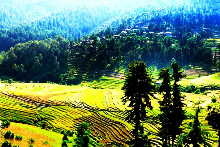 Pangna-Karsog Valley