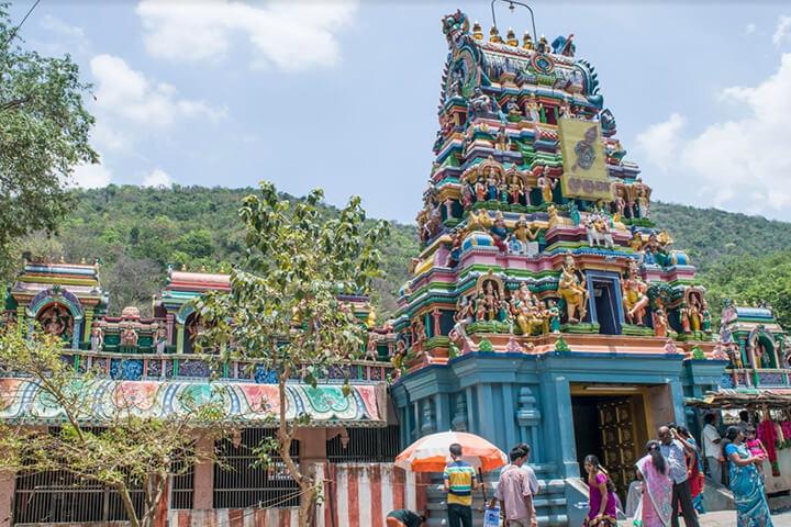 Pazhamudhircholai Murugan Temple